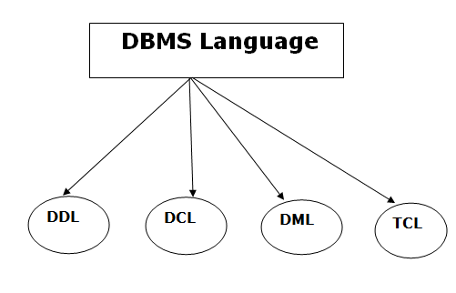 Database Languages and Interfaces in DBMS in hindi