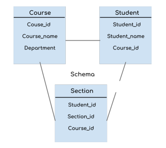 Instance and Schema in DBMS in Hindi